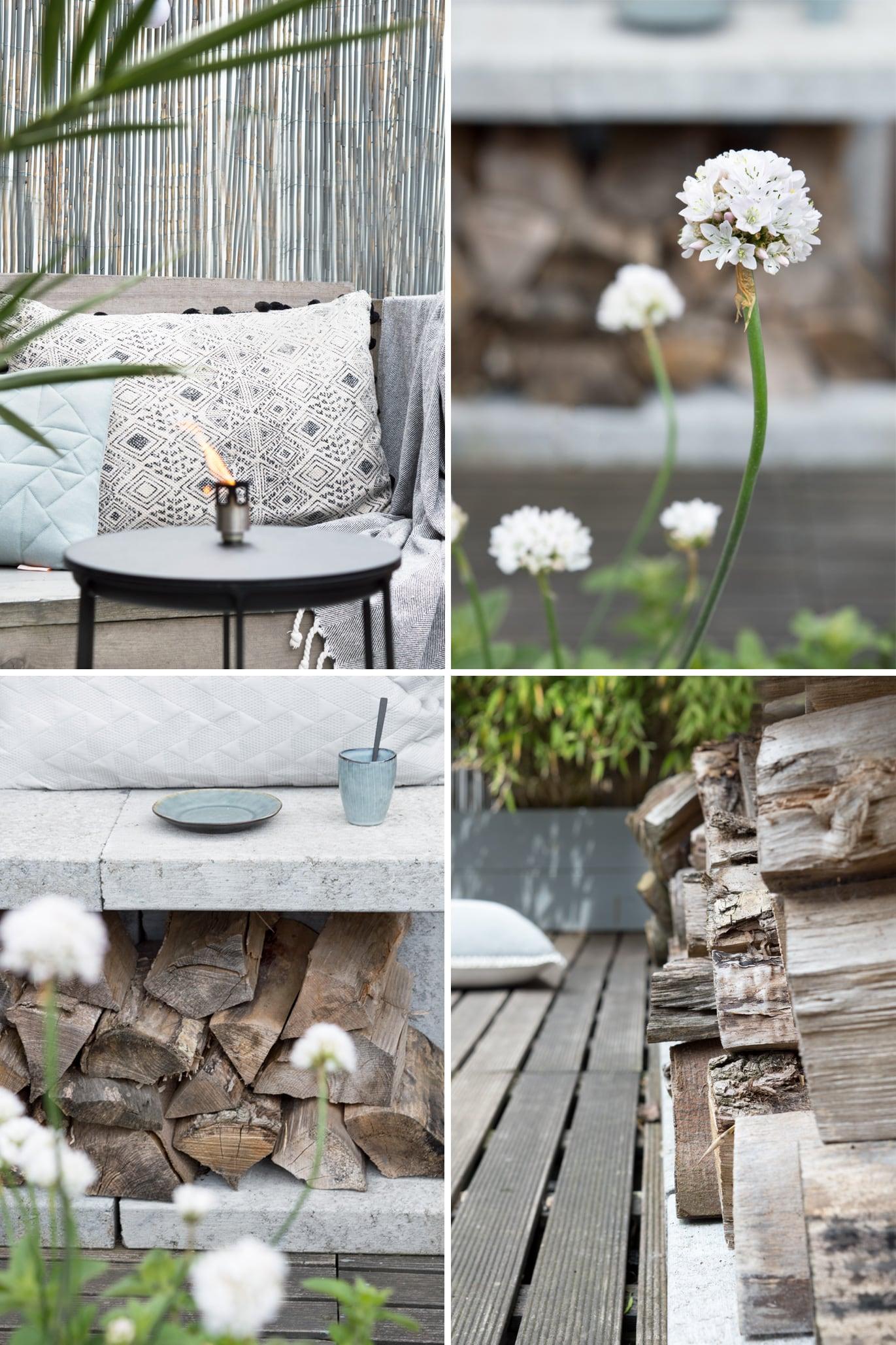 Plantjes op dakterras - Tanja van Hoogdalem