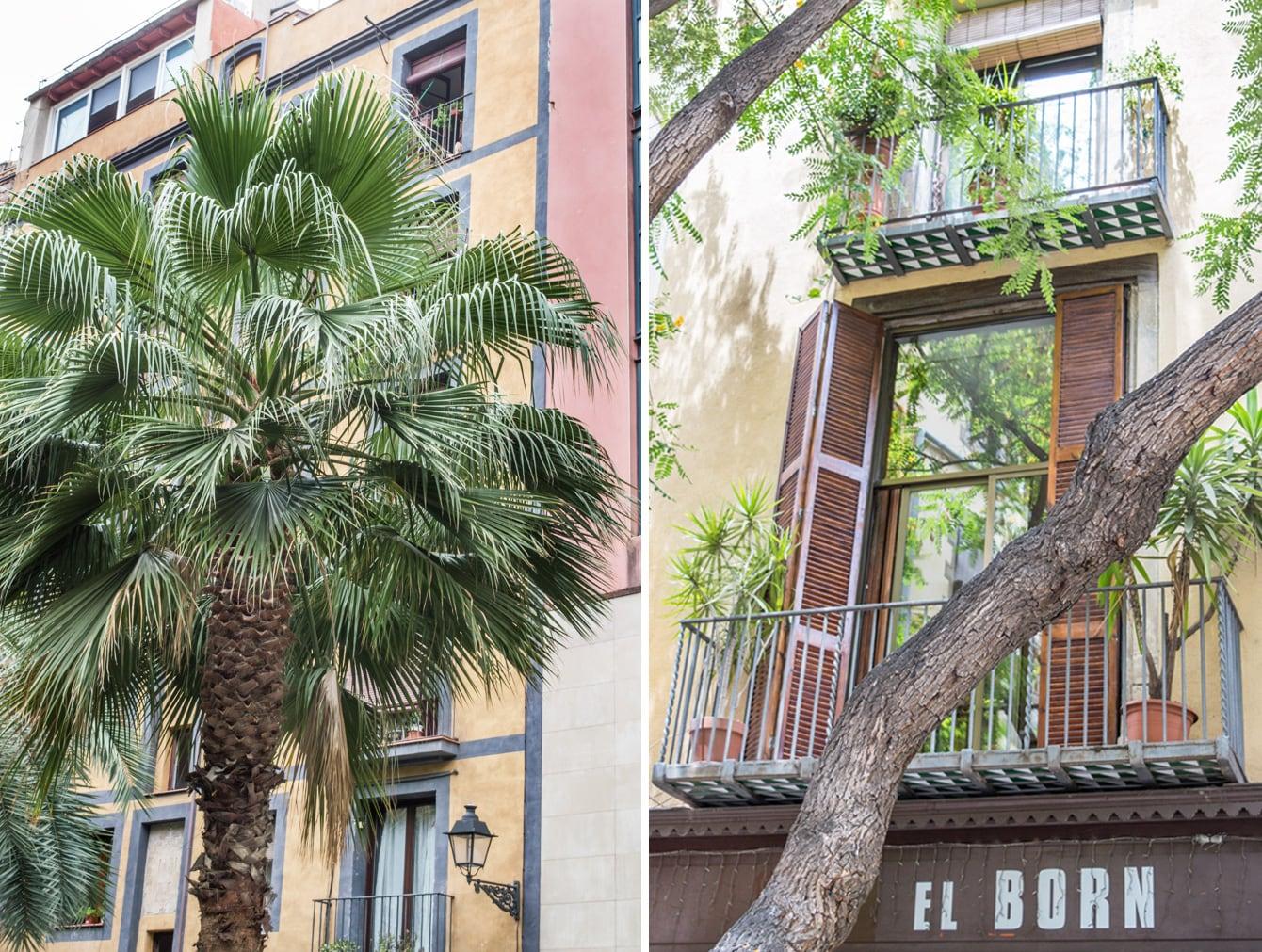 Omgeving el Born Barcelona tips