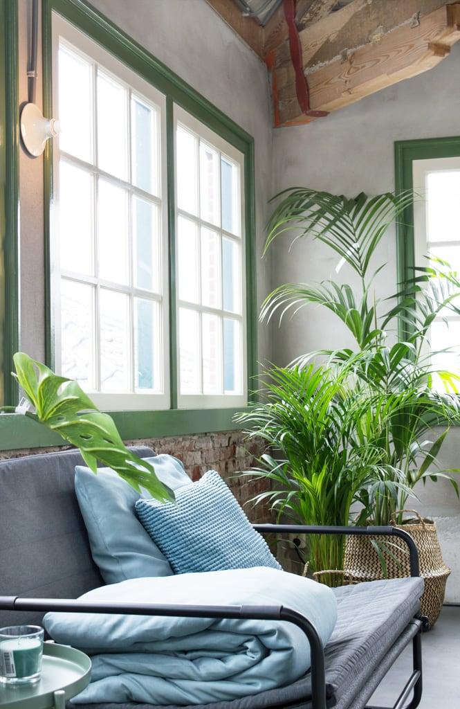 Ikea botanisch