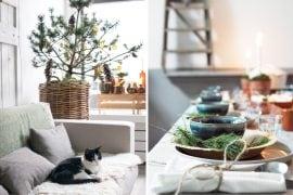 Kerstlunch Haarlem - Tanja van Hoogdalem