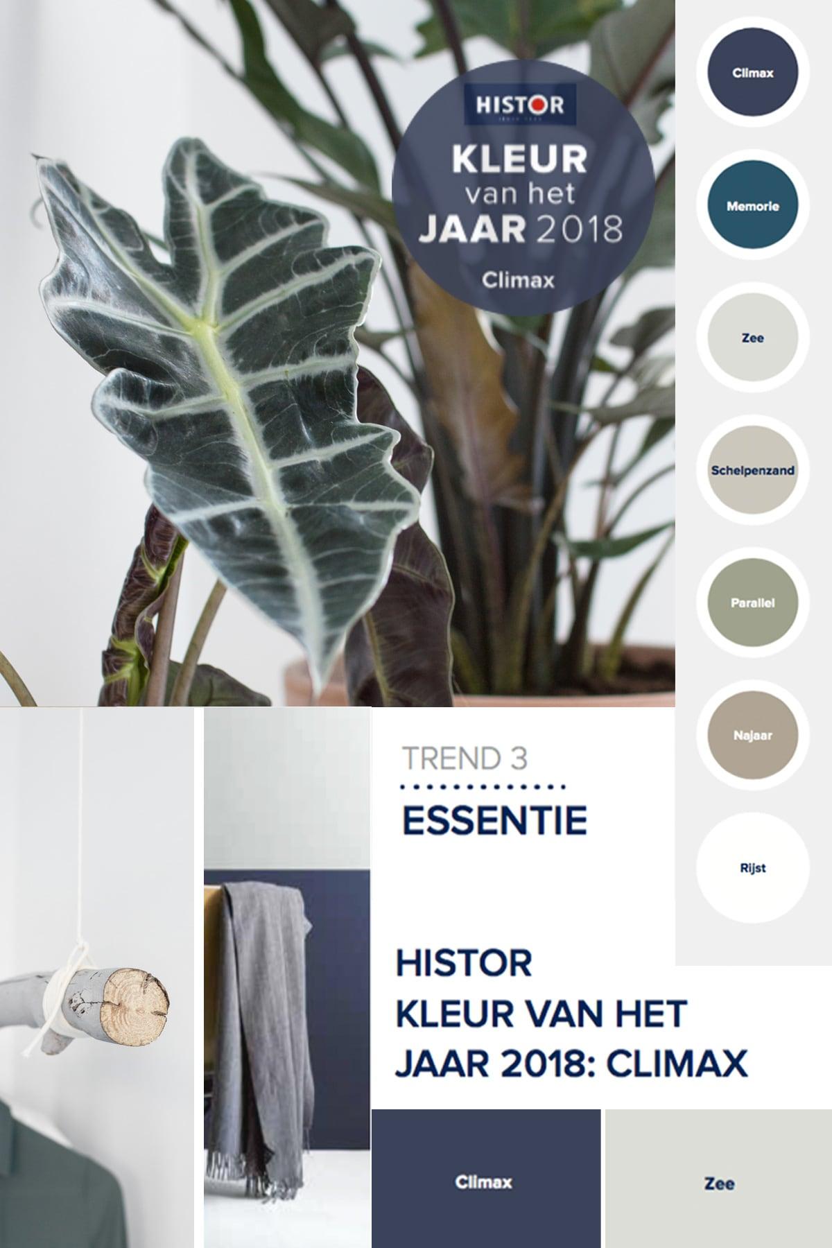 Histor climax moodboard - Tanja van Hoogdalem