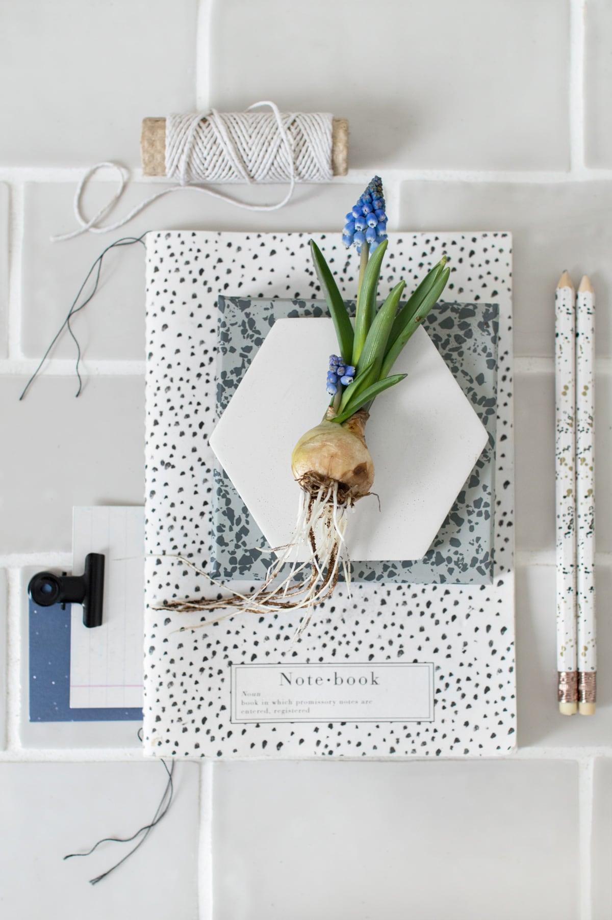 Bloembollen lente - Tanja van Hoogdalem