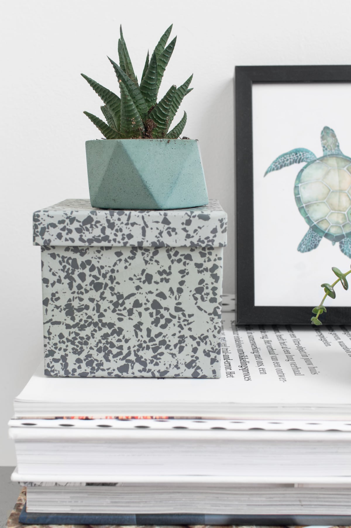 House Raccoon plantenpotjes - Tanja van Hoogdalem