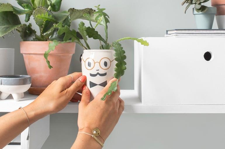 DIY: zelf een plantenhanger met opbergruimte maken