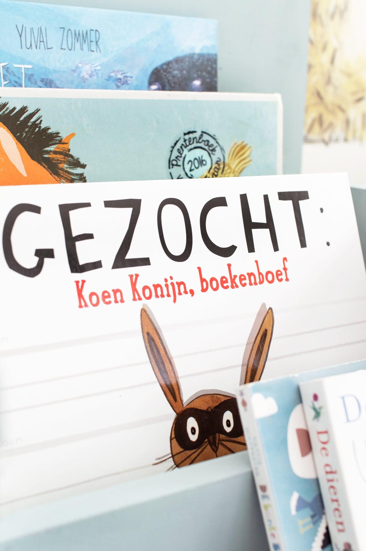 DIY kinderboeken opbergen kinderkamer - Tanja van Hoogdalem