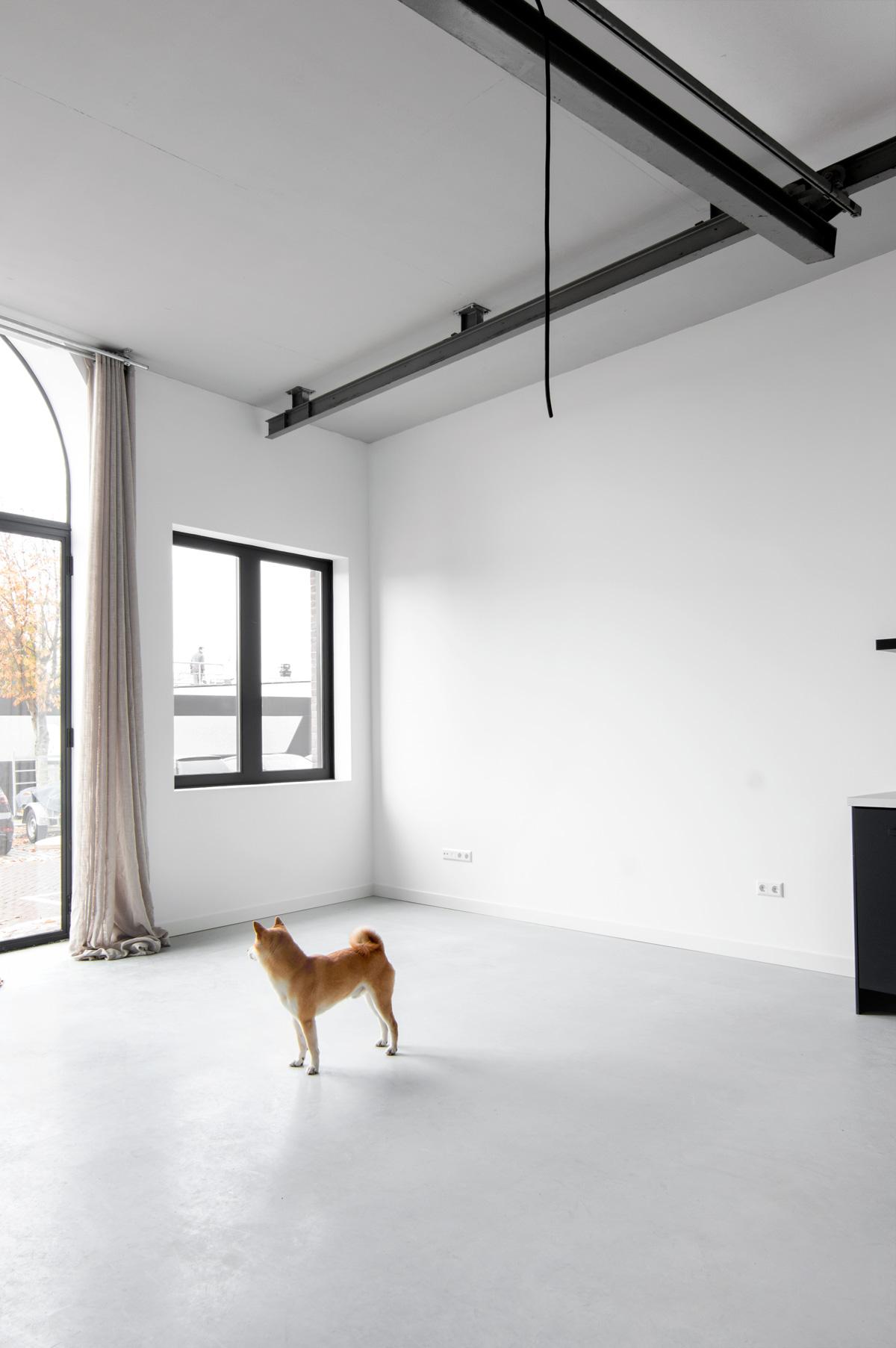 Nieuw huis Rocco - Tanja van Hoogdalem