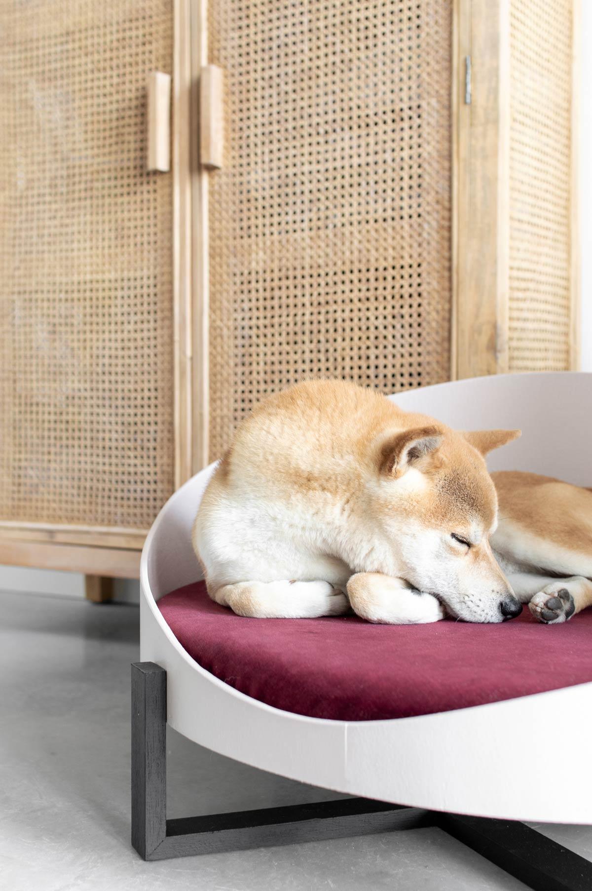 DIY hondenmand velvet - Tanja van Hoogdalem