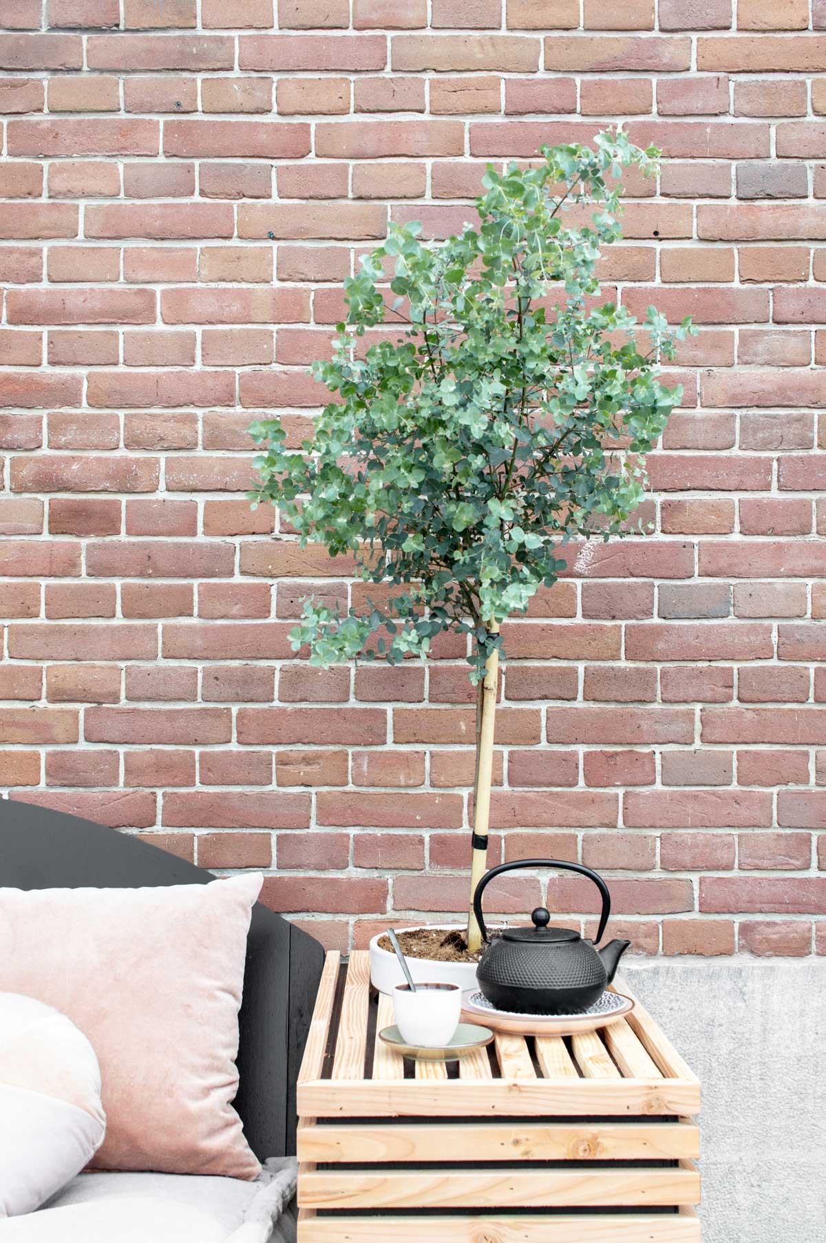 DIY loungebank voor buiten - Tanja van Hoogdalem