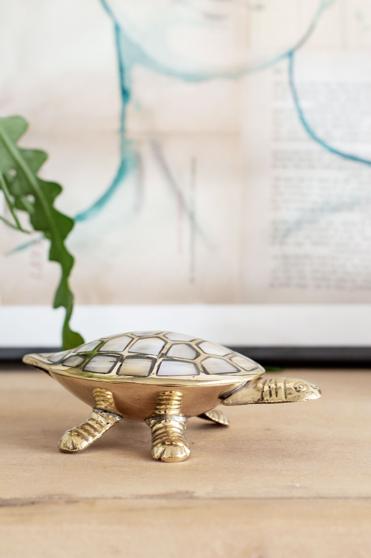 Turtle parelkom - Tanja van Hoogdalem