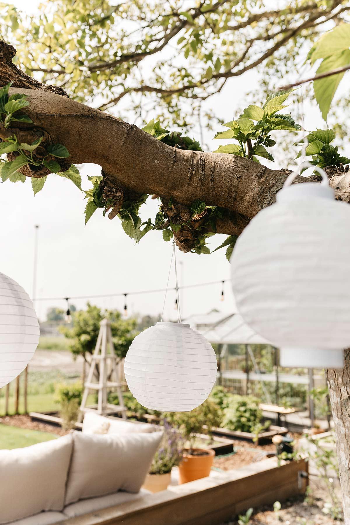 Lampionnen tuin - Tanja van Hoogdalem